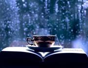 Что почитать в дождливый день? Список из 10 стоящих книг