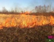 Пенсионер получил ожоги при выжигании сухой растительности