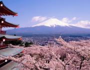 Япония упростила визовые требования для белорусов