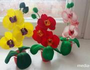 Предпраздничный мастер-класс: делаем орхидею своими руками