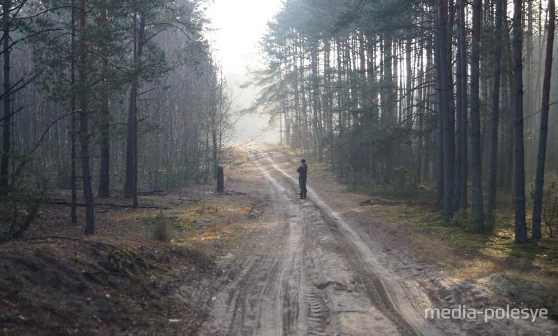 Фото иллюстрационное из архива Медиа-Полесья