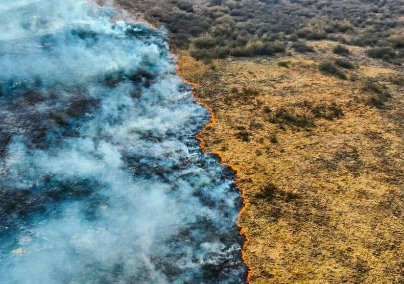 Грандиозный пожар на Пинщине. Фото по тексту Василия Пошелюка