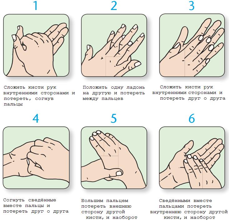 Как правильно мыть руки. Фото «Зелёный портал»