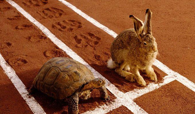 Снимок носит иллюстративный характер / Фото: cluber.com.ua
