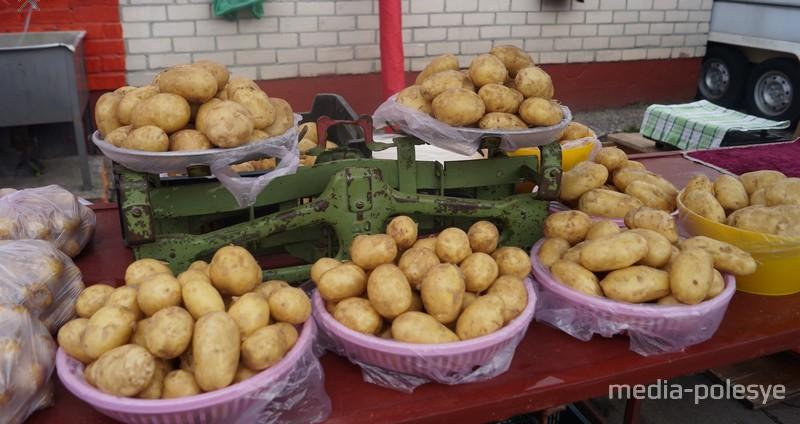 Килограмм молодой картошки стоит 1-2,5 рубля