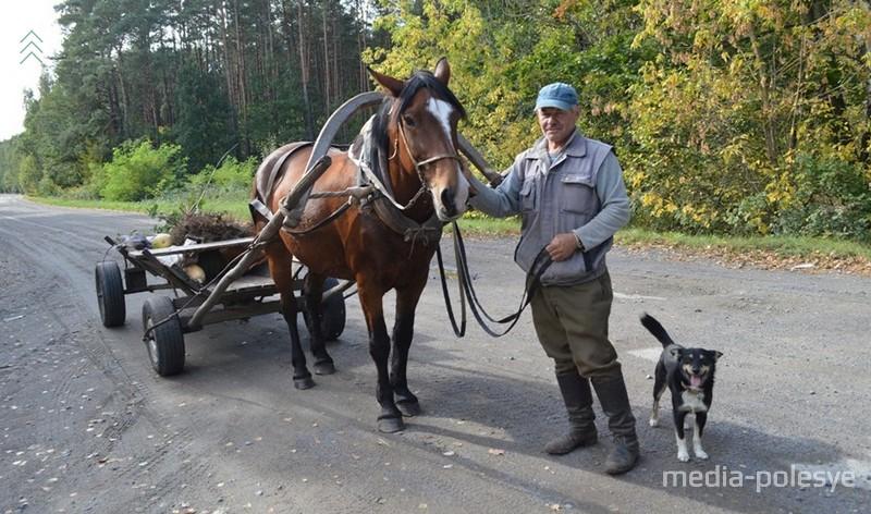 Последняя лошадь в деревне