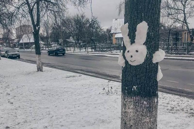 Снежный заяц прилетел @nastya_makovskaya