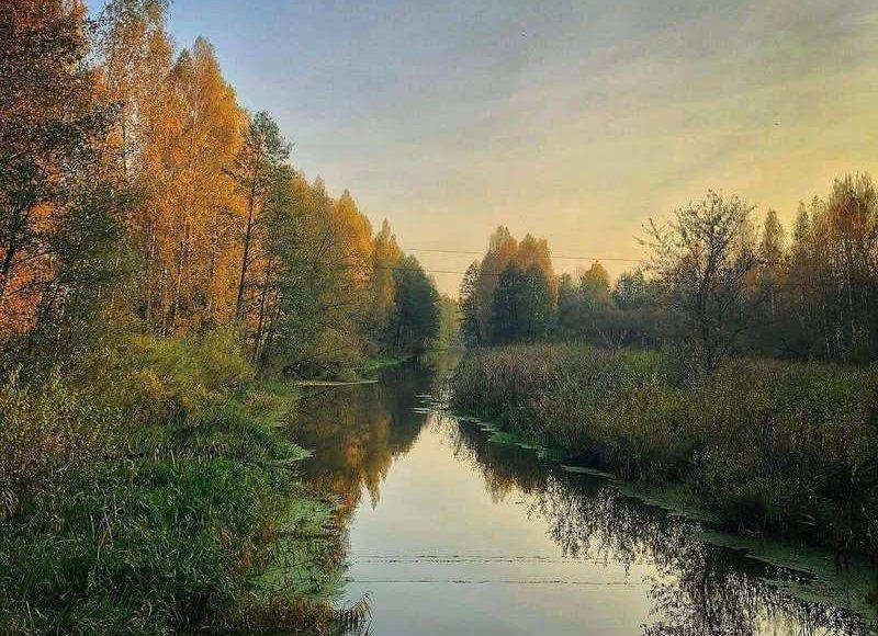 Осень @evgeny_volodko