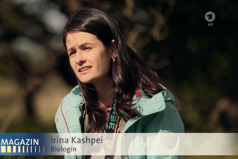 Ирина Кашпей. Скриншот видео