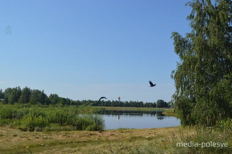 Вороны над прудом и церковью