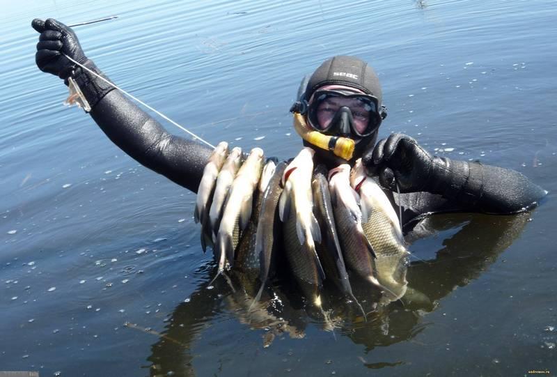 Фото использовано в качестве иллюстрации, с сайта activefisher.net