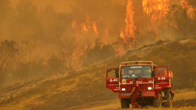 Мэр Антальи Мухиттин Бёджек заявил, что пожары могли стать результатом поджогов, потому что вспыхнули в четырех местах почти одновременно. Президент Реджеп Тайип Эрдоган в четверг заявил, что поджигатели, если таковые будут найдены, понесут суровое наказание. Фото Anadolu Agency